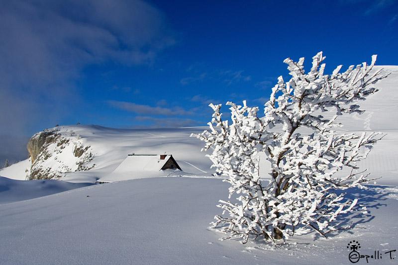 Bergerie du Charmant som sous la neige