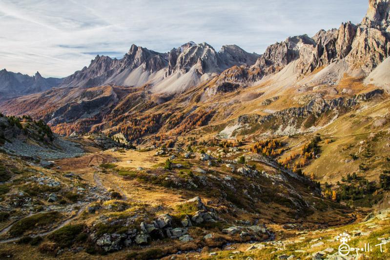 La vallée d'or clarée - Thomas Capelli