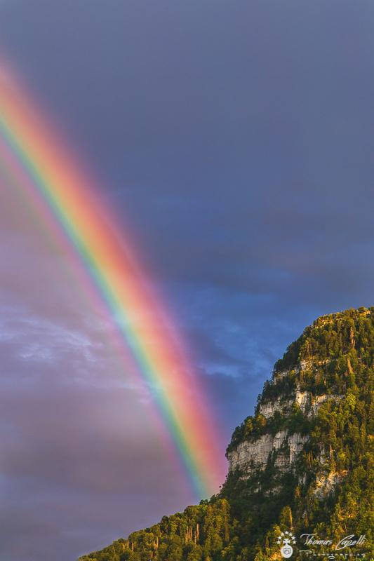 arc en ciel en chartreuse - Thomas Capelli