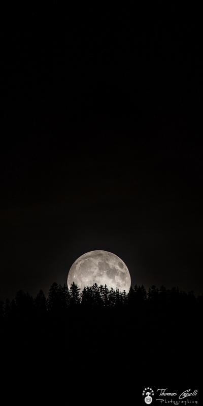 lever de lune, chartreuse - Thomas Capelli