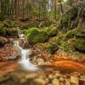 ruisseau de corbel - Thomas Capelli