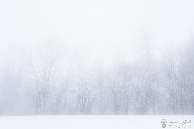 manteau blanc - Thomas Capelli