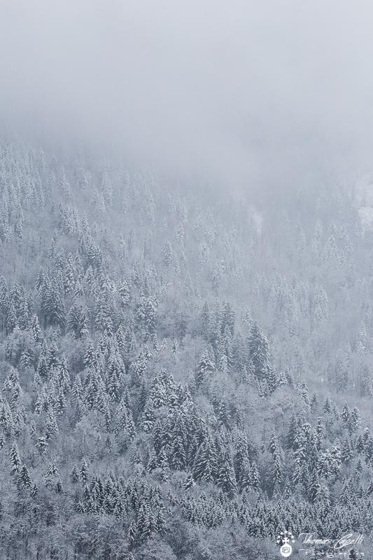 neige currière - Thomas Capelli