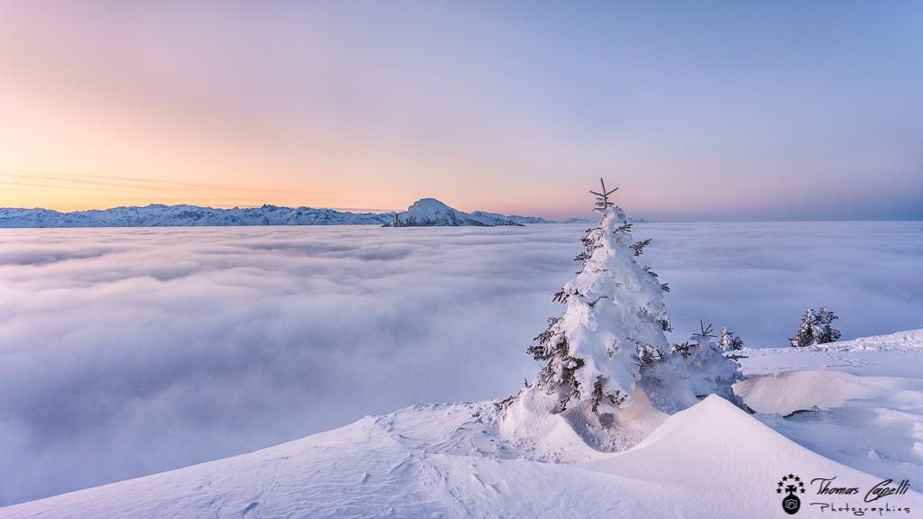 Neige et mer de nuages en chartreuse - Thomas Capelli