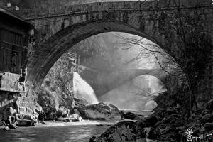 galerie de photo de paysage au bord de l'eau en chartreuse - thomas capelli